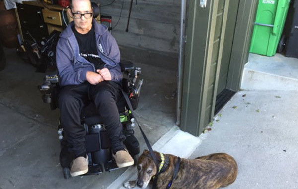 Banco se recusa a pagar passeador de cachorro porque o animal tem nome terrorista